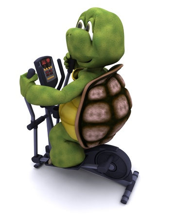 3d render of a tortoiserunning on a cross trainer Stock Photo - 12397389
