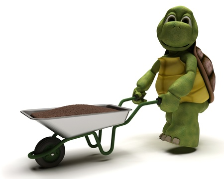 3D render of a tortoise gardener with a wheel barrow carrying soil photo