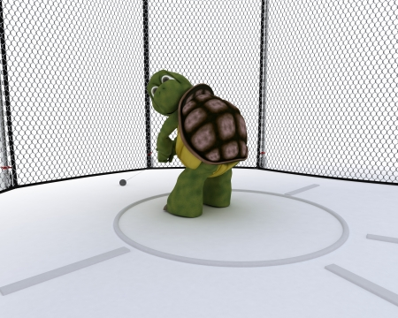 3D render of a tortoise competing in hammer tow photo