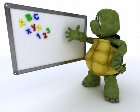 3D render of a tortoise with White class room drywipe marker board photo