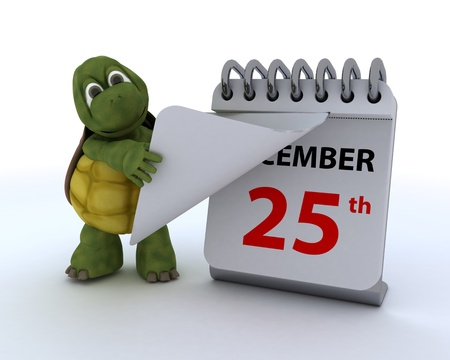3D render of a tortoise with a calendar photo