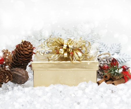 cinammon: Christmas gift nestled in snow with pine cones and cinammon