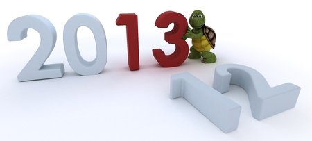 3D render of a tortoise bringing in the new year Stock Photo - 17204239