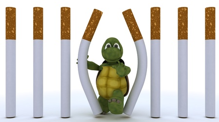3D render of a tortoise escaping cigarette prison Stock Photo - 17621839