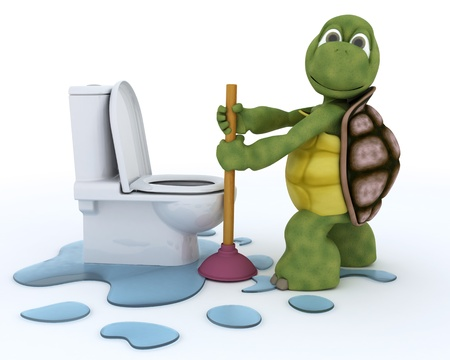 3D render of a tortoise plumbing contractor photo