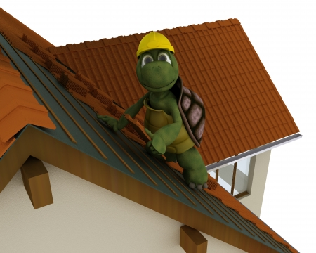 3D render of a tortoise roofing contractor photo