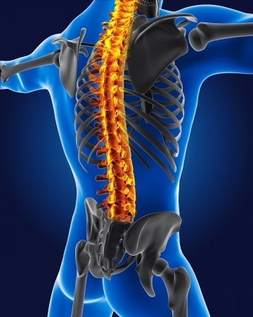 BACK bone: 3D medical man with skeleton spine highlighted Stock Photo