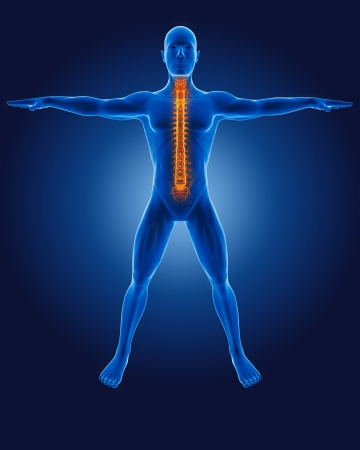 medical man: 3D medical man with skeleton spine highlighted Stock Photo