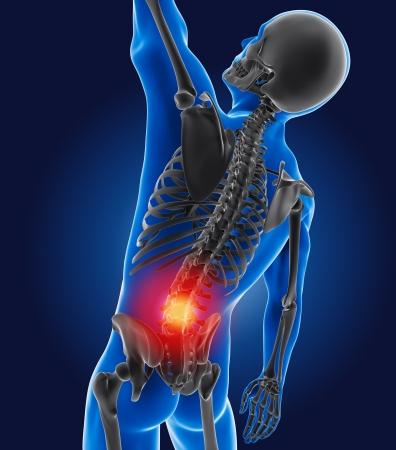 3D medical man with skeleton spine highlighted Standard-Bild