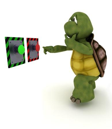どのボタンを押せば決定する亀の 3 D レンダリングします。 写真素材