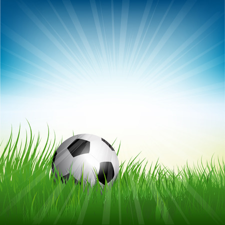 world cup: Illustration of a football or soccer ball nestled in grass
