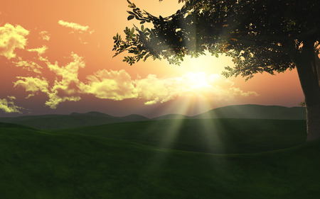 rolling landscape: 3D landscape with tree on rolling hills with sunset sky