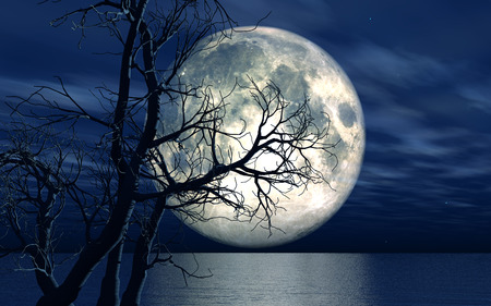 dead sea: 3D landscape background with moon over the sea with dead tree