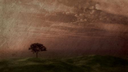 cielo atardecer: �rbol silueta contra un cielo del atardecer con un efecto vintage Foto de archivo