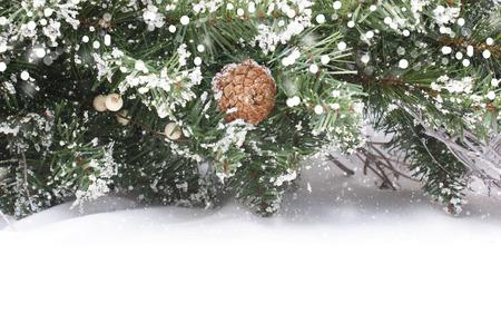 nestled: Christmas tree branches nestled in snow