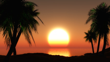 sunset sky: 3D render of a tropical landscape against a sunset sky