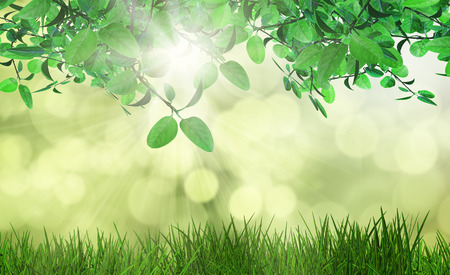 defocussed: 3D render of leaves and grass against a defocussed background