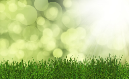 defocussed: 3D render of lush green grass on a defocussed background Stock Photo