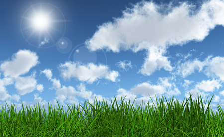 lush: 3D render of lush green grass with a sunny blue sky Stock Photo