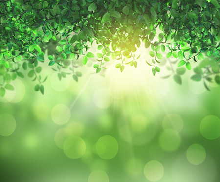3D render of the sun shining through leaves on a bokeh background