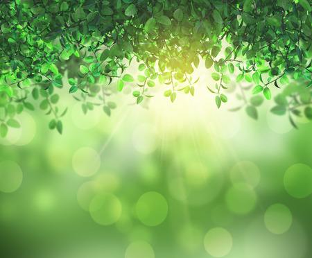 3D render van de zon schijnt door bladeren op een bokeh achtergrond