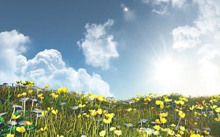 buttercups: 3D render of a landscape of buttercups and daisies against a sunny blue sky