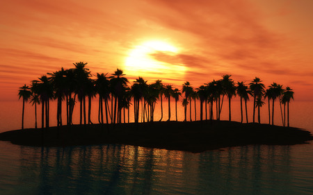 palm tree sunset: 3D render of a palm tree island at sunset Stock Photo