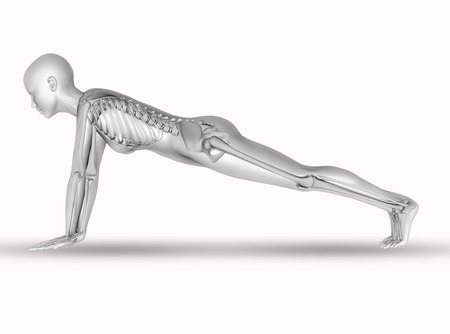 3d nude: 3D render of a female medical figure with skeleton in yoga position