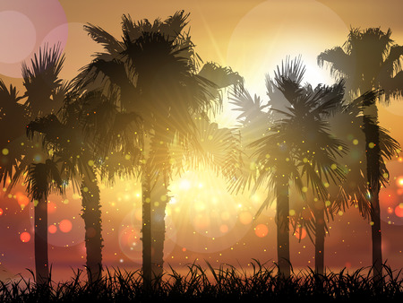 sunset sky: Silhouette of palm trees against a sunset sky Stock Photo