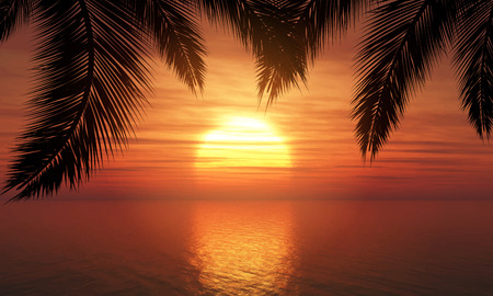 Silhouette of palm trees against a sunset ocean