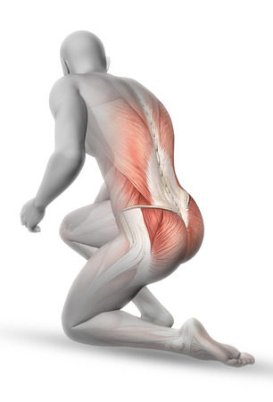 kneeling man: 3D male medical figure with partial muscle map in kneeling position Stock Photo