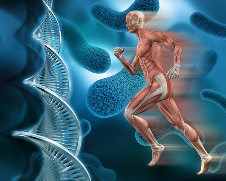 3D male medical figure with muscle map on an abstract virus background with DNA strands Foto de archivo