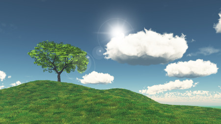 grassy: 3D render of a tree on a grassy hill