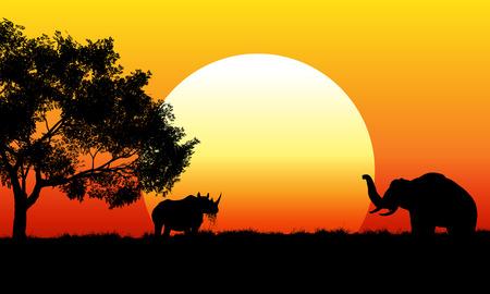 nashorn: Illustration einer afrikanischen Safari-Szene Lizenzfreie Bilder
