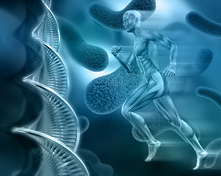 3D male medical figure with muscle map on an abstract virus background with DNA strands 版權商用圖片