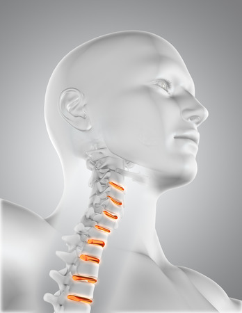 partial: 3D render of a male medical figure with skeleton in throat and partial spine highlighted Stock Photo