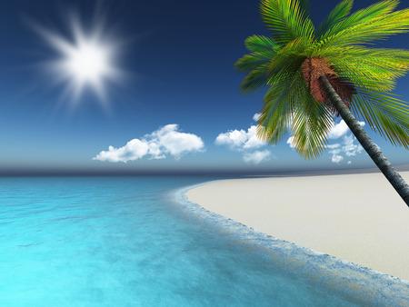 sea beach: 3D render of a palm tree on a sandy tropical beach