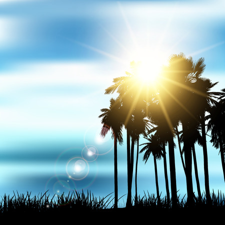 arbre paysage: Silhouette of a palm tree landscape Banque d'images