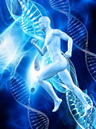 figura humana: figura masculina 3D en un fondo m�dico con hebras de ADN