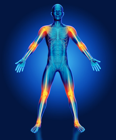 nude male body: 3D render of a male medical figure with joints highlighted