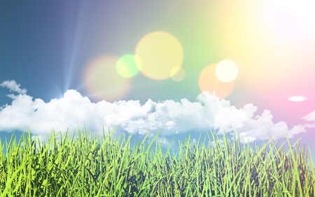 grassy: 3D render of a grassy landscape with a retro effect