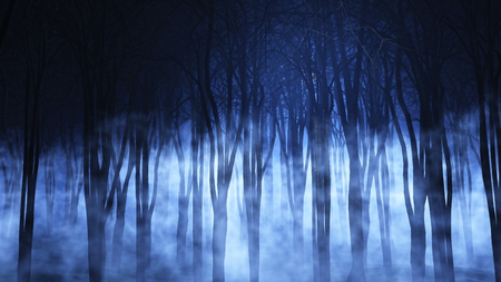 3D render of a spooky foggy forest Stock Photo