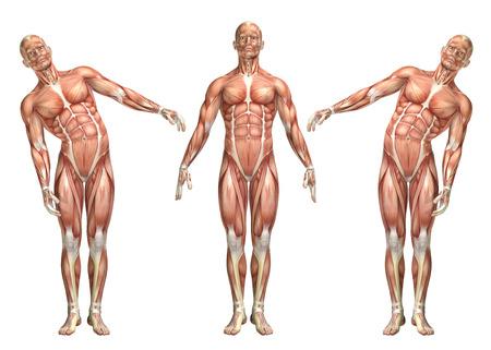 3D render van een medische figuur die romp lengtebuiging