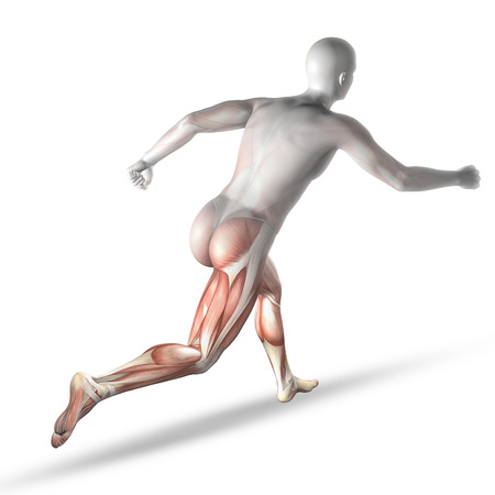 partial: 3D render of a male medical figure running with partial muscle map