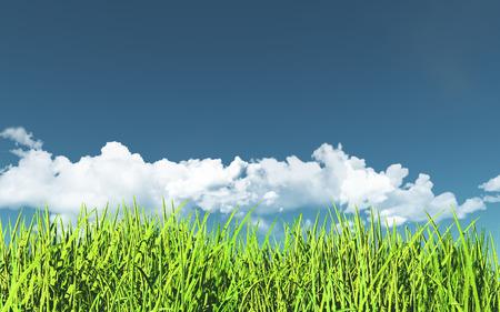 tranquility: 3D render of a grassy landscape