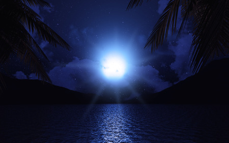 a tree: 3D render of a lake with palm trees against a cloudy moonlit sky