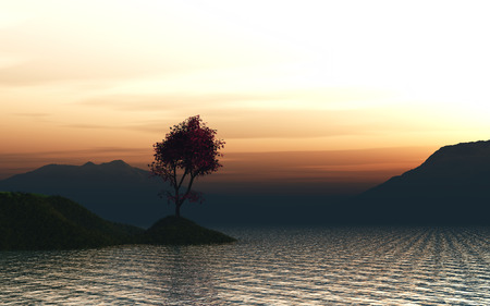 japanese maple: 3D render of a Japanese Maple tree on a grassy island in the ocean against a sunset sky