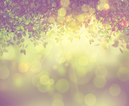 bokeh background: 3D render of the sun shining through leaves with a retro effect