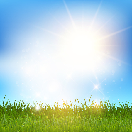 grassy: Grassy landscape against a blue sky