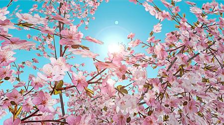 Gerenderten 3D-Effekt der Kirschblütenbaum gemalt Standard-Bild